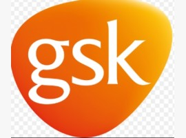 GSK awards global media account to Publicis Media