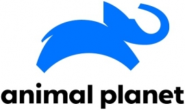 Animal Planet launches new brand identity to bring people up close to animals