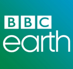 Google Reveals Breathtaking BBC Nature Content for Earth Relaunch