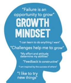 Digital Business Requires Growth Mindset and Not Just Technology