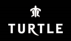 Havas Media wins Digital Mandate of Turtle