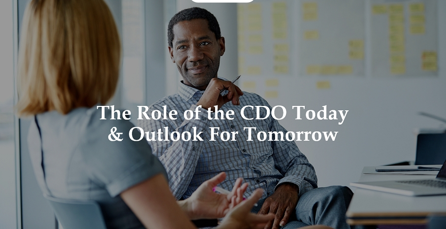 Chief Diversity Officers Today: Paving the Way for Diversity & Inclusion Success