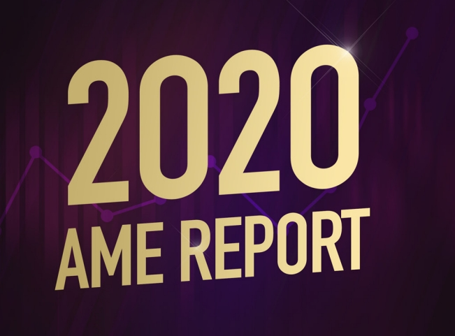 AME Awards Releases 2020 AME Report